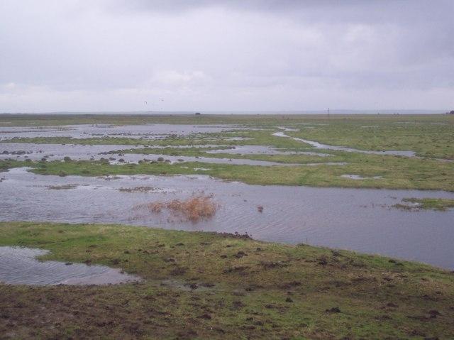 Flooded Minster Marshes