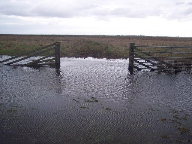 Flooded Dyke and footpath (2)