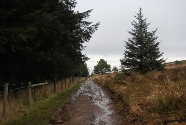 Footpath along the edge of Withycombe Common