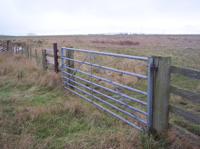 Gate in the Elmley Marshes
