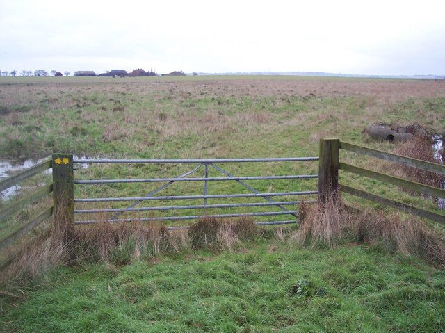 Gate and footpath junction in Elmley Marshes