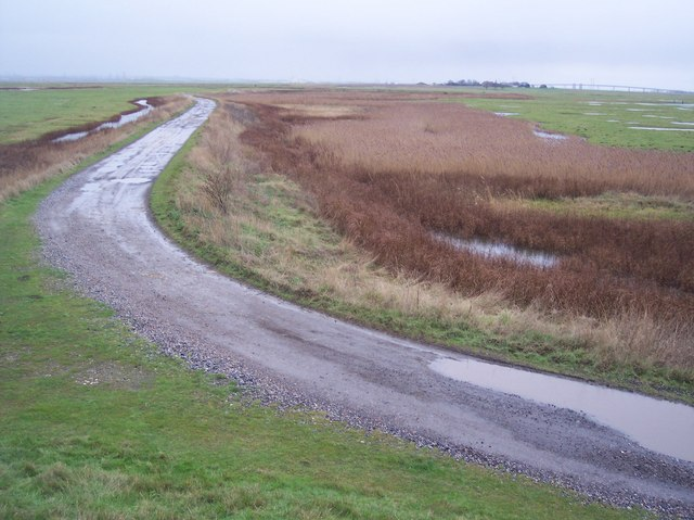 Track in the Elmley Marshes