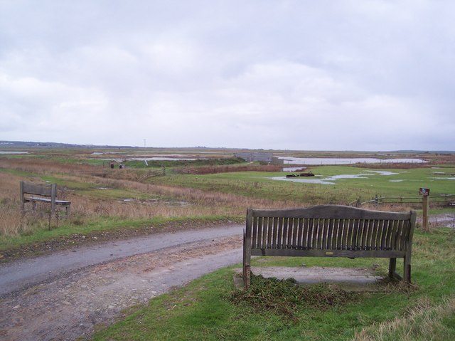 Benches beside the track in Elmley Marshes