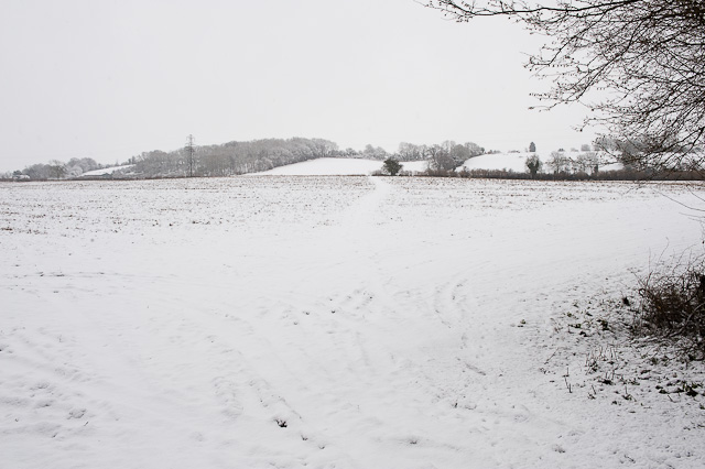 Footpath to Owslebury from bottom of Whites Hill