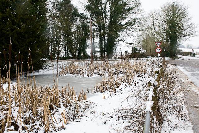 Pond beside Hazeley Road
