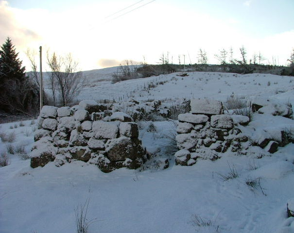 Ruined croft building in Sheader