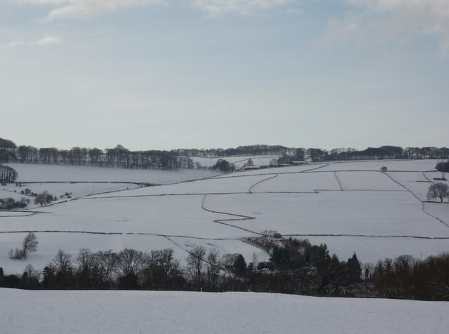 Snow fields and walls above Ashford