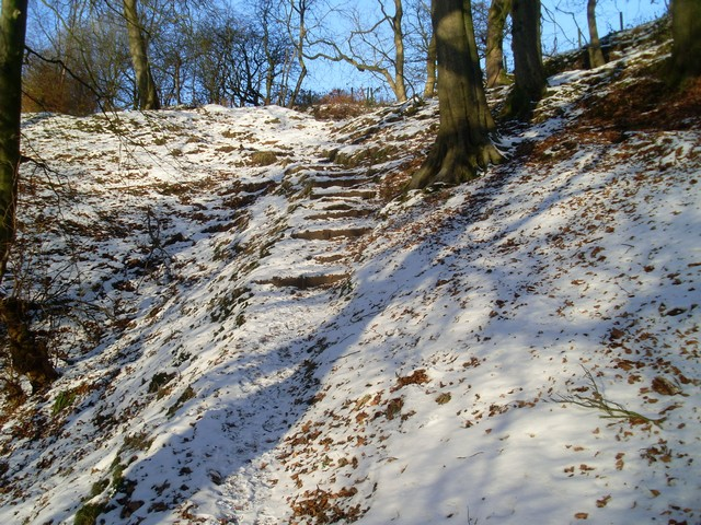 Woodland path, Killoch Glen