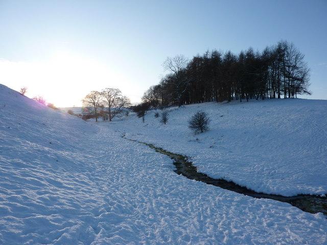 Stream, copse and winter sun on snow