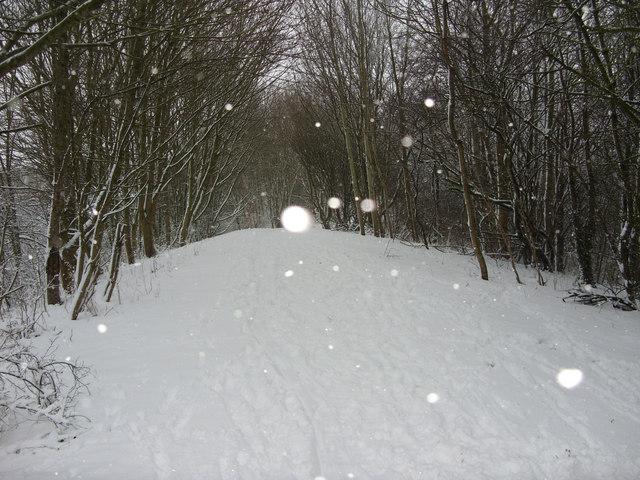 Public open space in the snow, Liden, Swindon