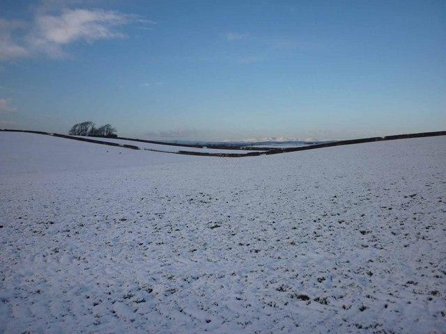 Drumlin valley near Aldcliffe