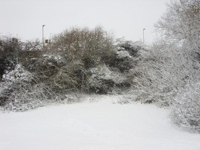 Public open space, Liden, Swindon