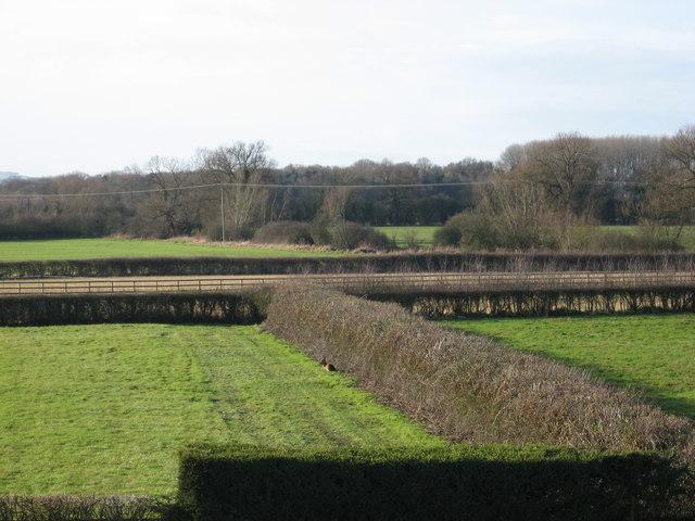 Fields near Longcot