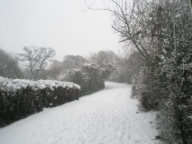 Snow covered track behind Barncroft Way