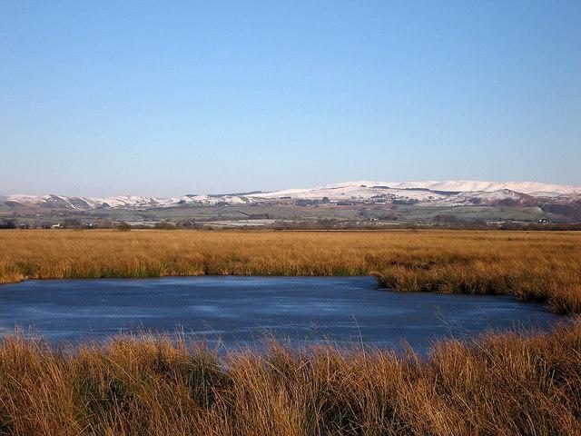 Frozen pond, Cors Caron Nature Reserve