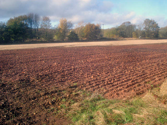 Ploughed field near the Linby Trail