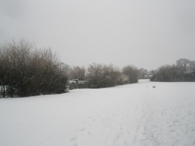Distant seat on a snowy Stockheath Rec
