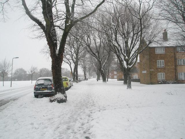 A snowy pavement in Stockheath Lane