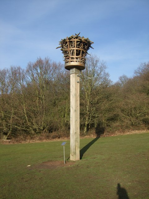 Beacon at Hainault Forest Country Park