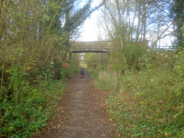 Bridge over the Linby Trail