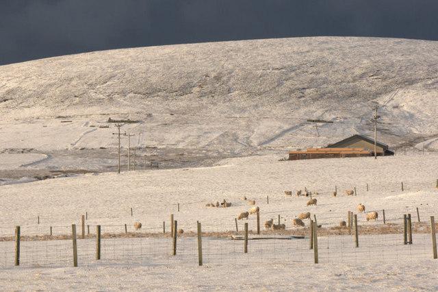 View towards Housi Field from Haroldswick