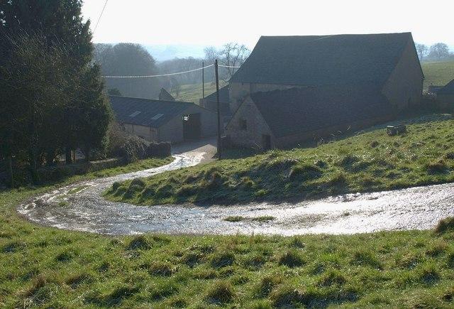 Driveway into Fernley Farm