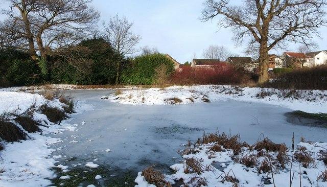 Frozen pond near Strathleven House