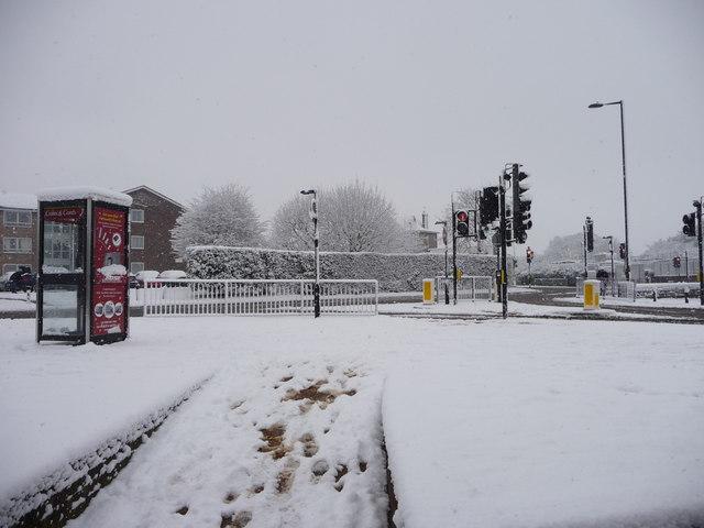 Oakwood in the snow, London N14
