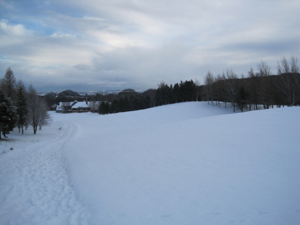 Beamish Park Golf Club, 6th Fairway.