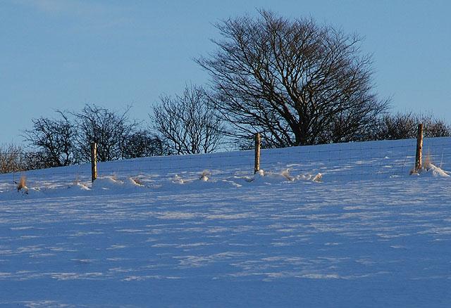 Fields under snow