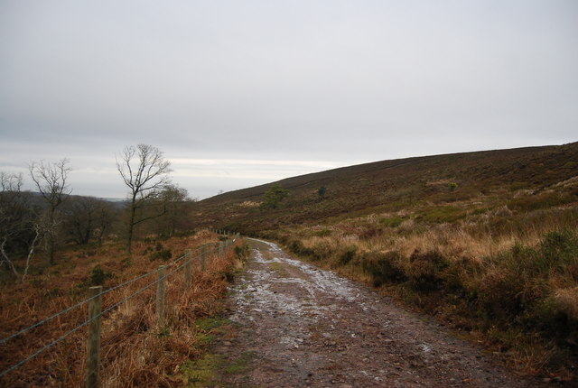 Bridleway between Black Hill & Withycombe Scruffets