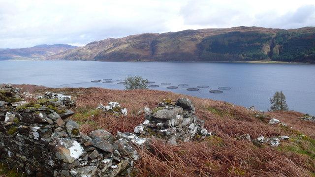 Stromemeanch and fish farm in Loch Carron