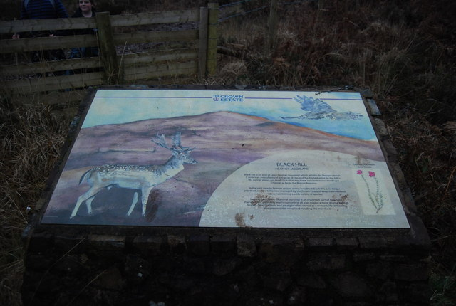 Information Board, Black Hill