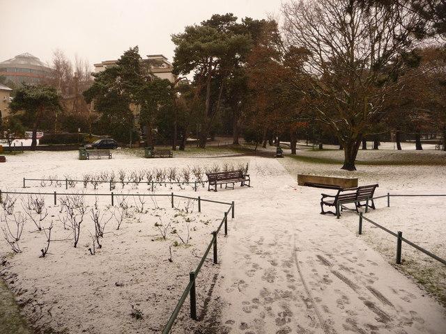 Bournemouth: snow at Horseshoe Common