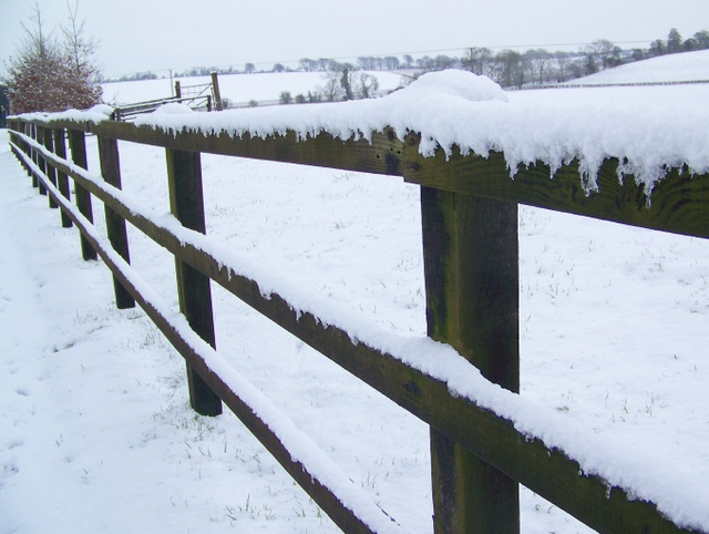 Post and rail fencing, Croucheston