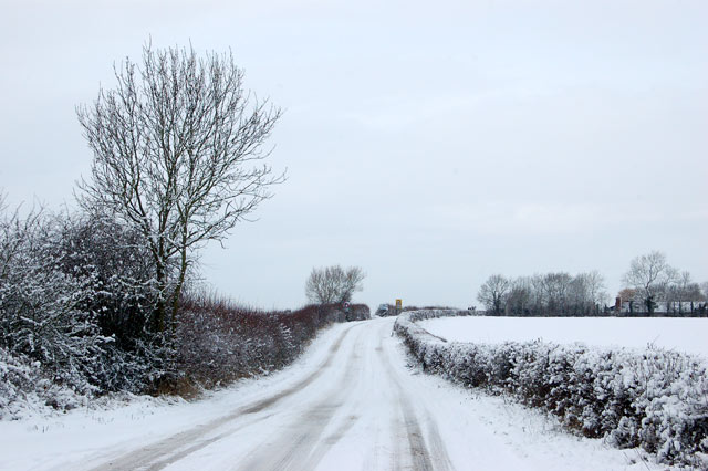 Lane east of Long Itchington in the snow