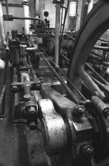 Steam hydraulic pumping engine