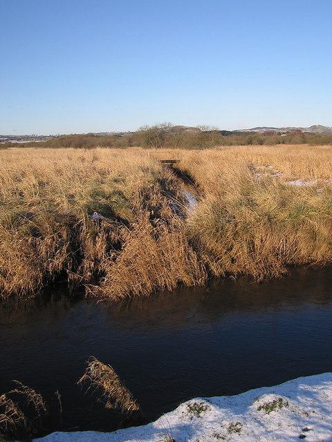 Tributary meeting the Afon Teifi, Cors Caron Nature Reserve