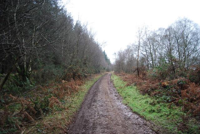 Macmillan Way West