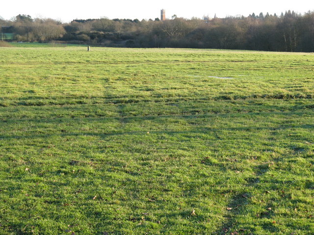 View across field near the Downs Link