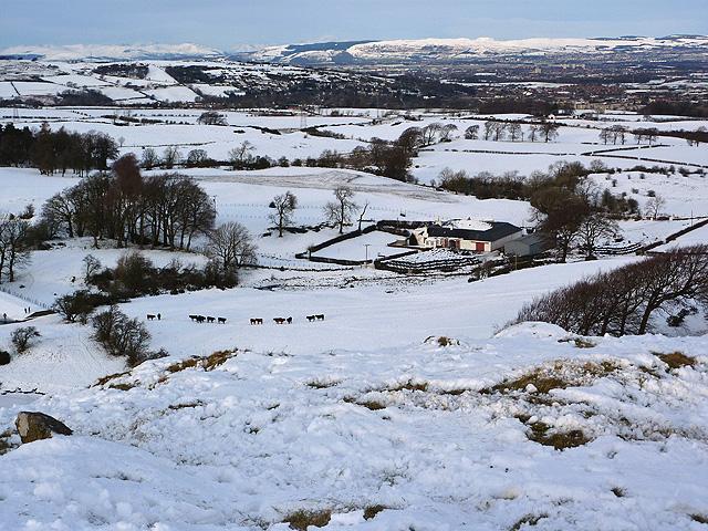 Snowy scene at Glanderston Mains