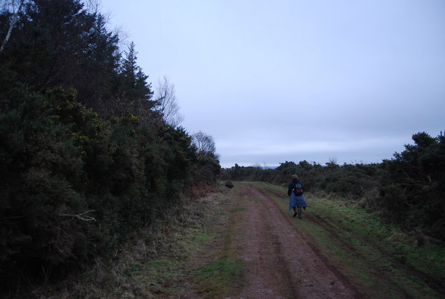 Macmillan Way West, Withycombe Hill