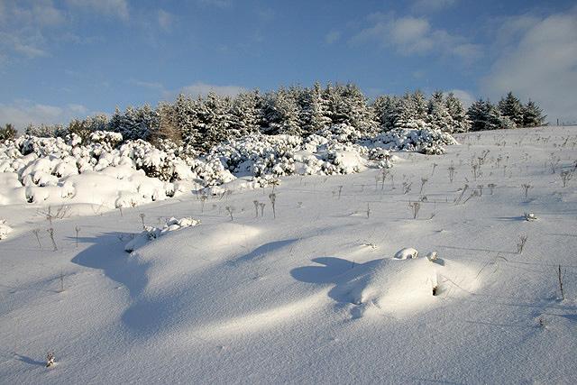Winter on Blaikie's Hill