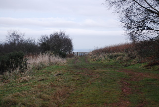 Macmillan Way West, Withycombe Hill, heading towards Withycombe