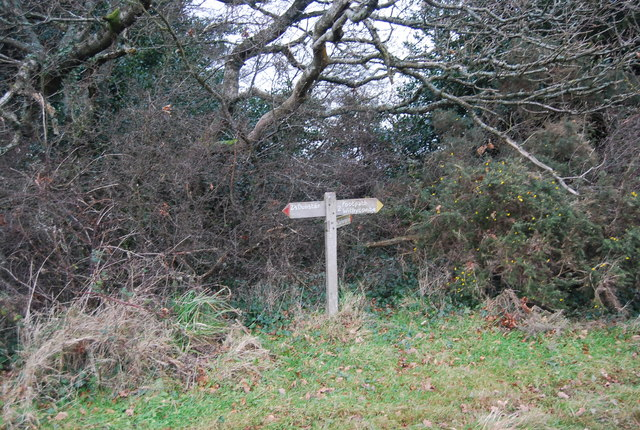 Footpath junction on the Macmillan Way West, Withycombe Hill