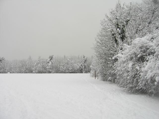 Open ground & snow