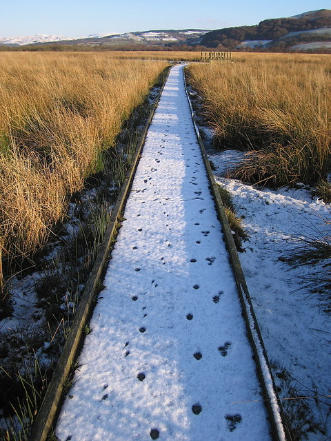 Boardwalk, Cors Caron Nature Reserve