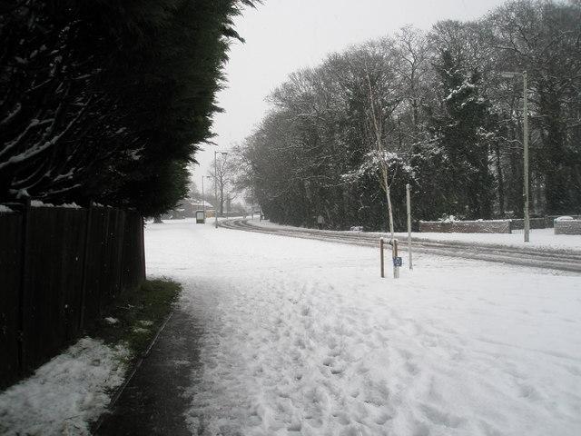 A snowy scene in Stockheath Road