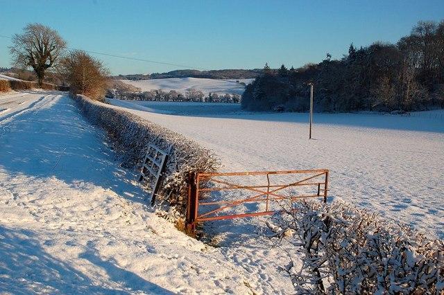 Snowy Farmland  at Rowanston