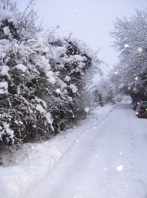 Redbridge Lane